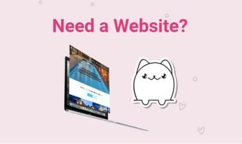 Catnapweb - Working Digital Marketing - Need a Website Desktop